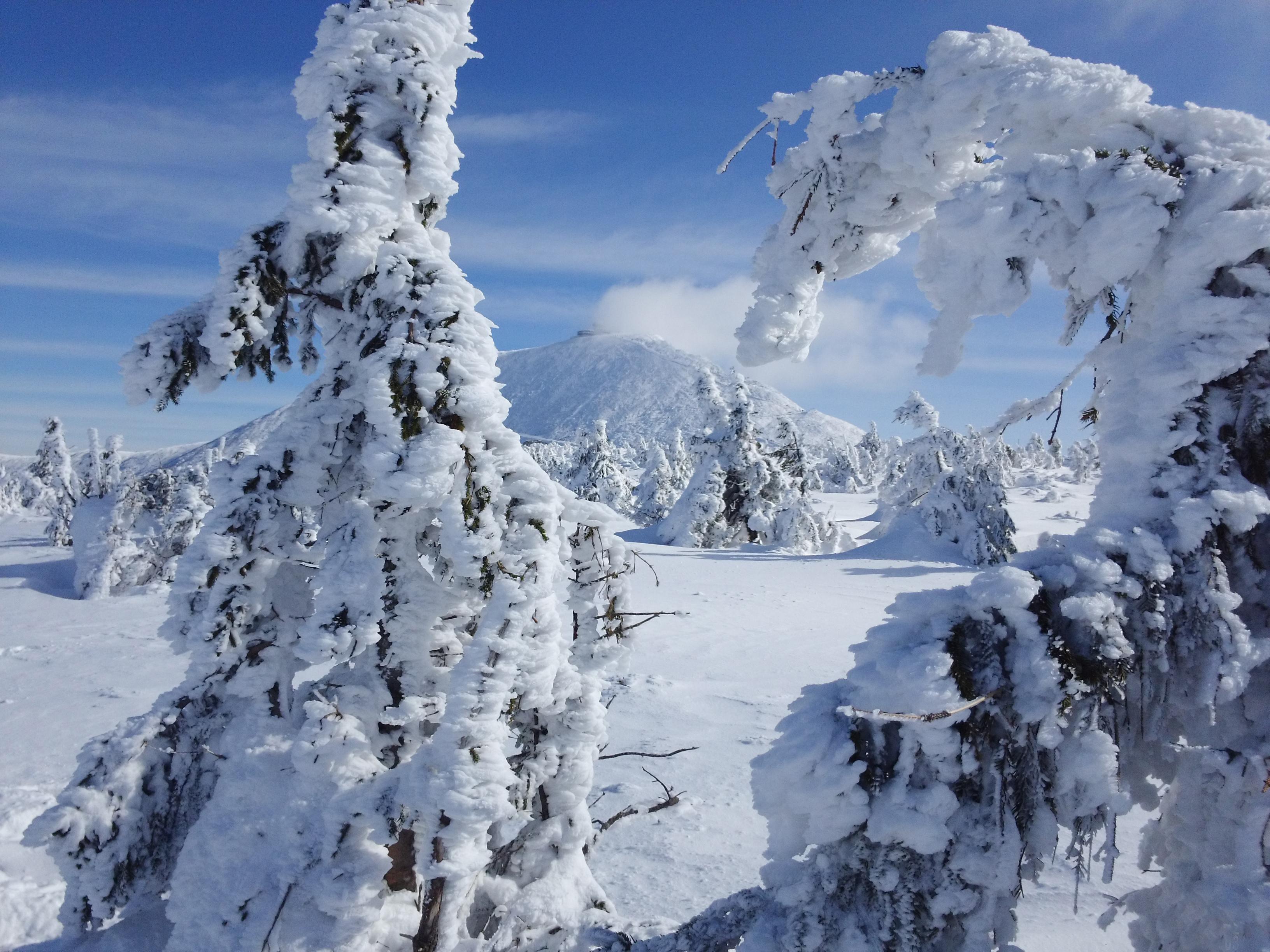 II Zimowy Maraton Karkonoski - Śnieżka