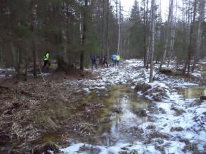 ultra trail puszcza knyszynska